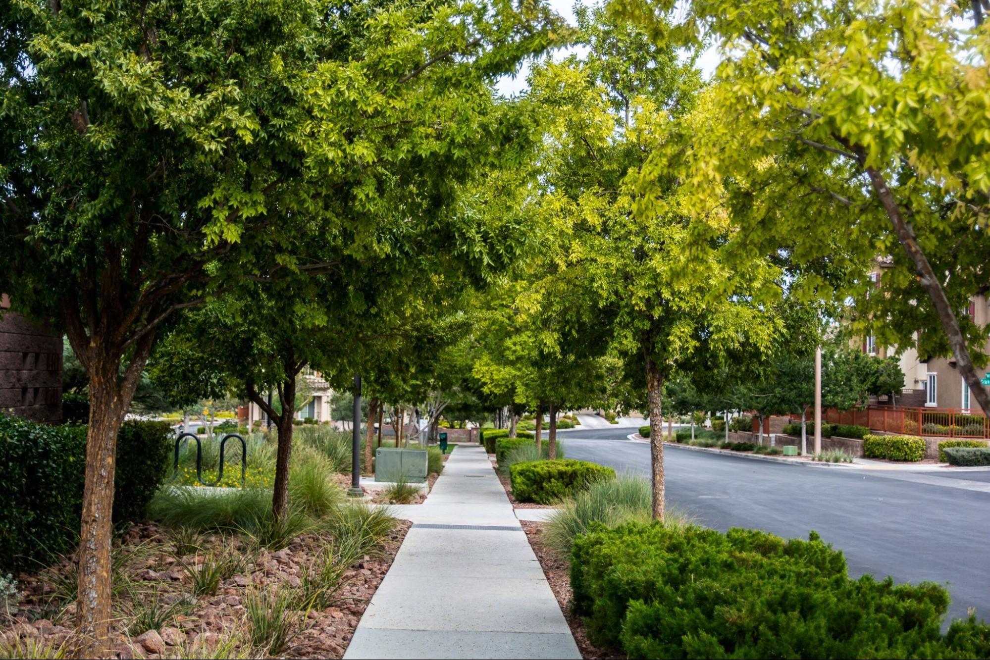 Best Neighborhoods in Las Vegas