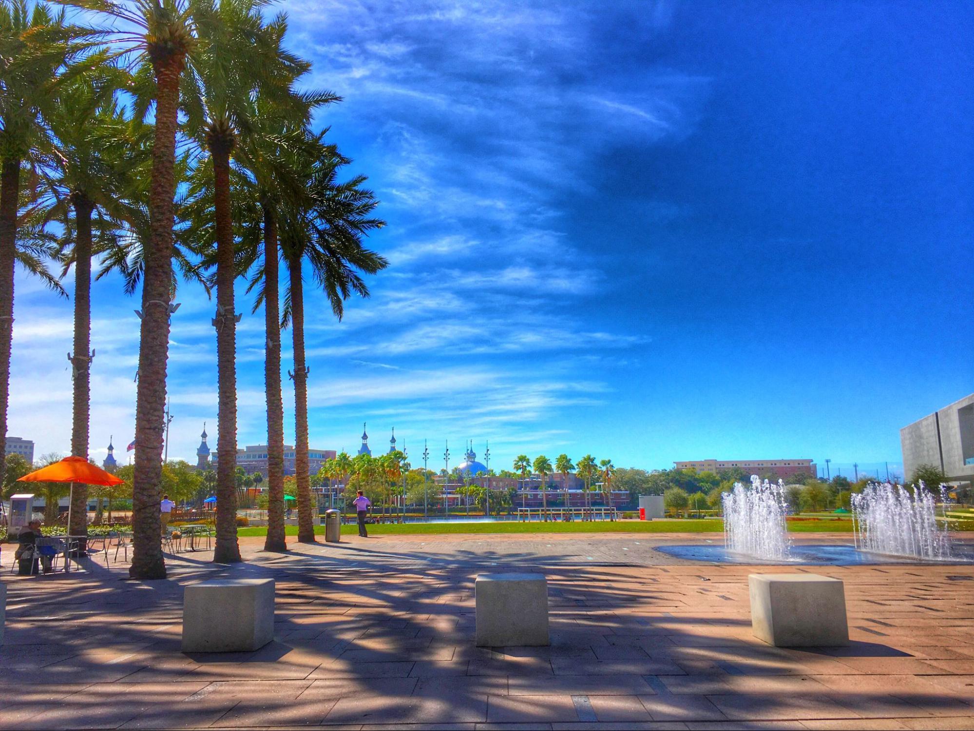 View of Tampa, Florida