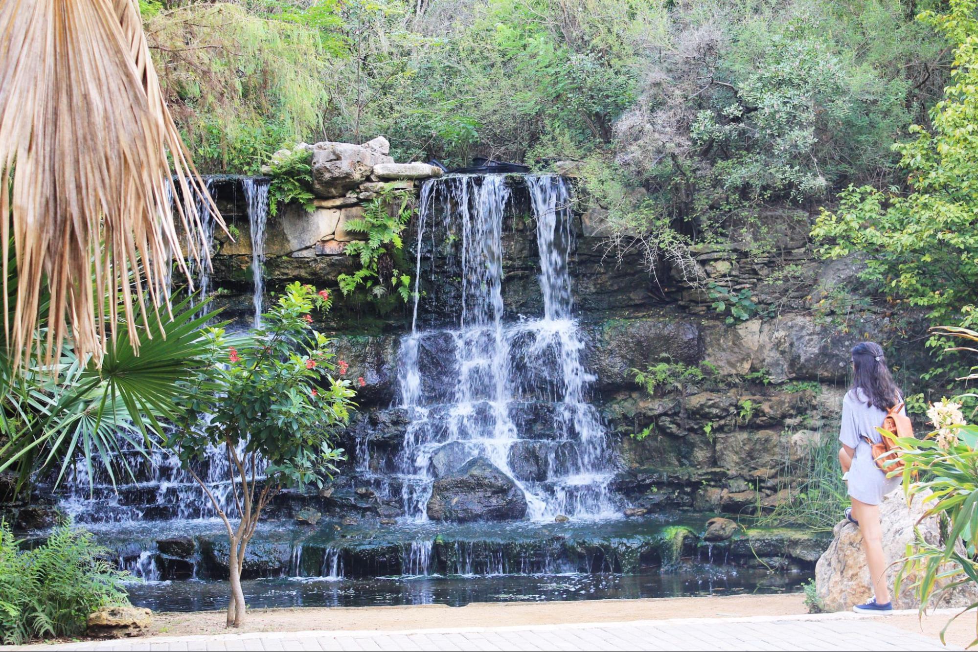 Barton Springs Park in Zilker, Austin
