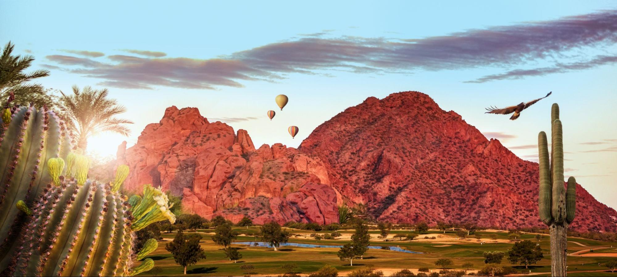 View of hot air balloons in Phoenix, Arizona