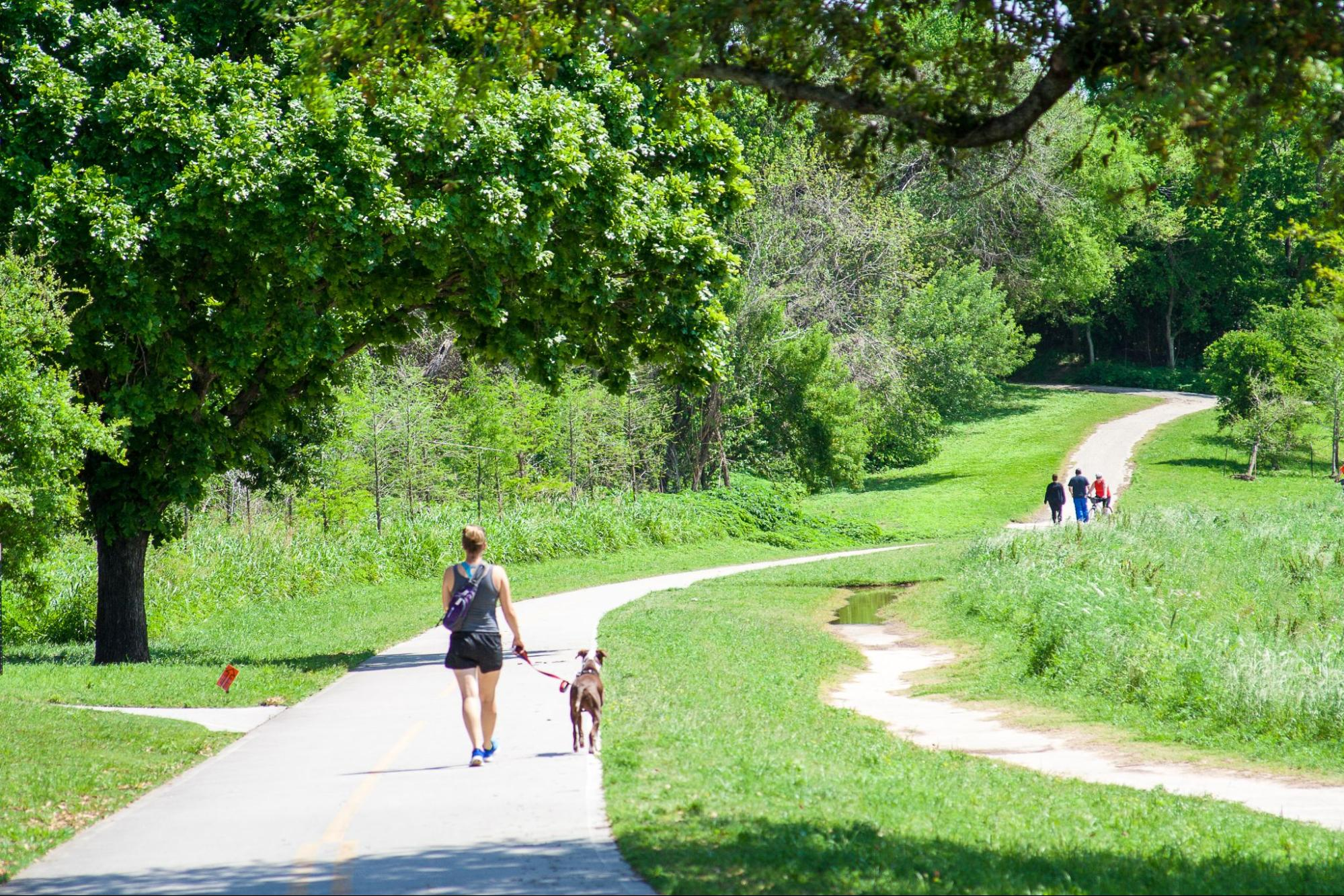 A woman walking her dog on the Buffalo Bayou trails in Houston, Texas